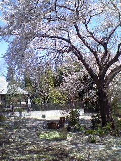 image/yokohama3-2006-06-30T19:10:00-1.JPG
