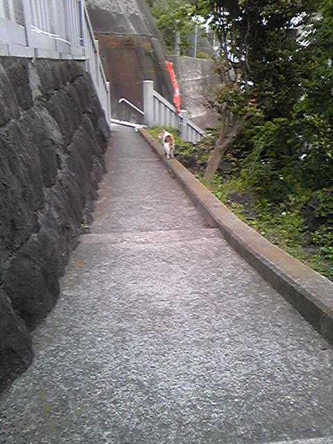 https://yokohama3.up.seesaa.net/image/yokohama3-2008-05-08T18_14_02-3.jpg